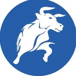 BlackBull-Markets-logo