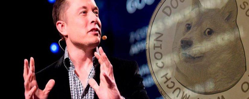 DOGE skyrocketed as a result of Elon Musk tweet